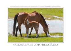 Kalender Coto de Donana