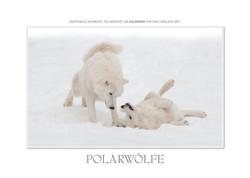 Kalender Polarwölfe