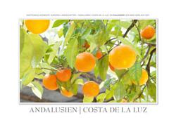 Kalender Andalusien Costa de la Luz