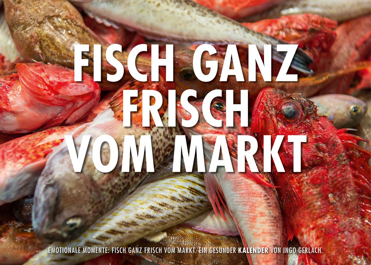Kalender Fisch ganz frisch vom Markt