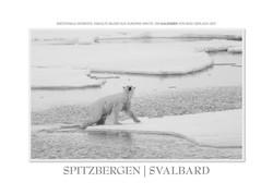 Kalender Spitzbergen   Svalbard