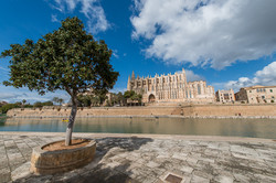 Palma de Mallorca © Gerlach_D8N2571