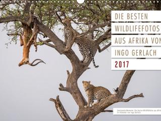 Meine schönsten Afrikabilder...