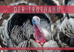 Kalender Der Truthahn