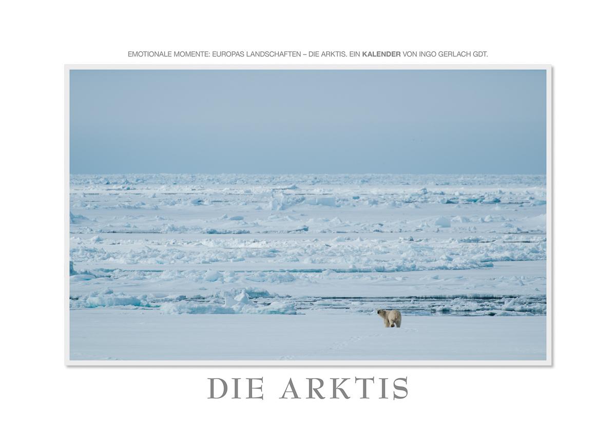 Kalender Die Arktis