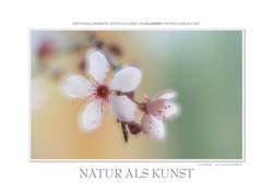 Kalender Natur als Kunst