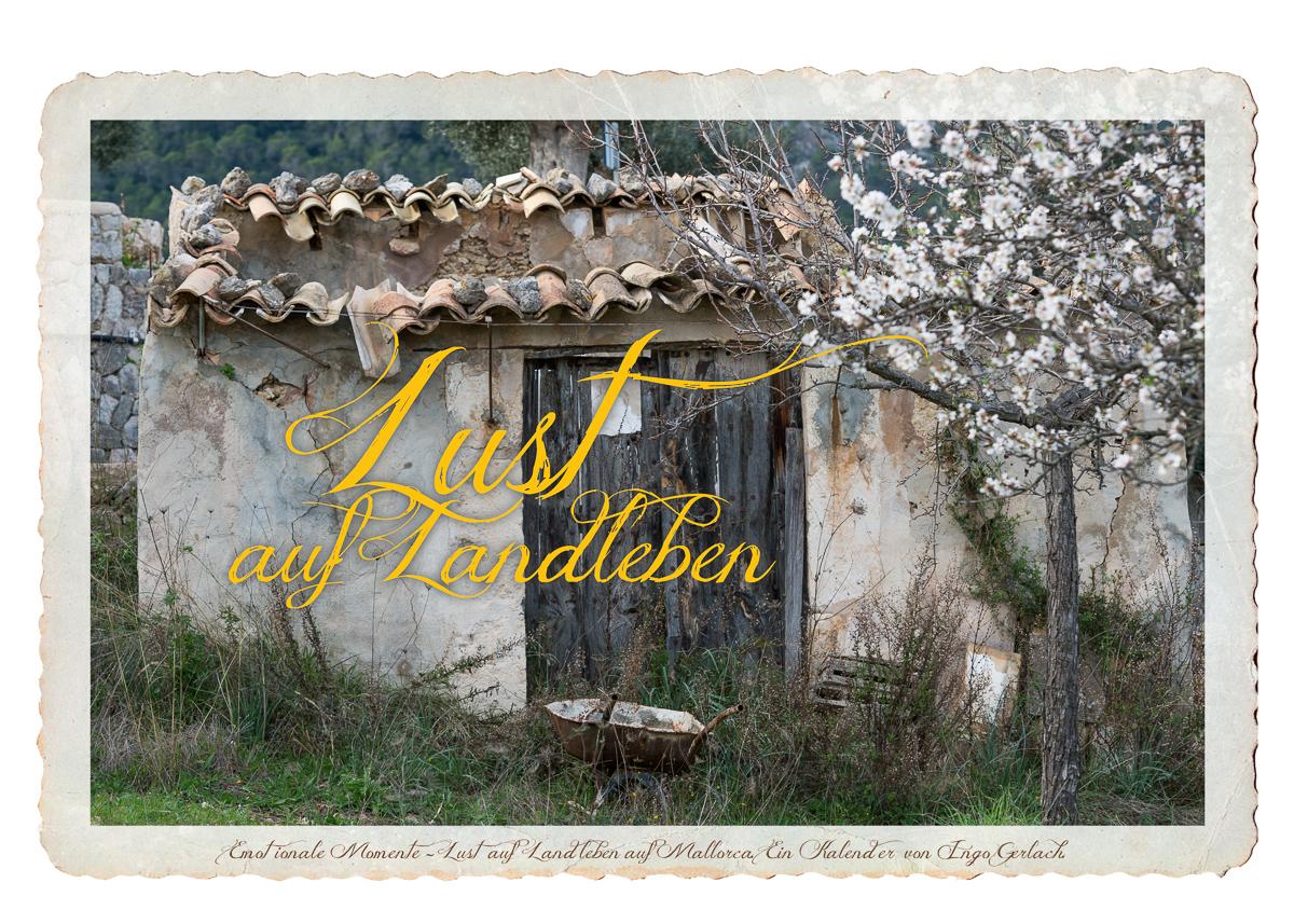 Kalender Lust auf Landleben