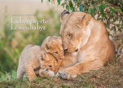 Kalender Löwenbabys