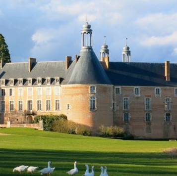 chateau de saint fargeau.jpg