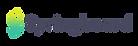 springboard dark logo.png