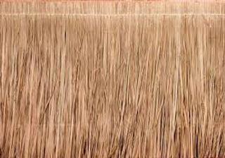 thatched grass background.jpg