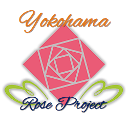 yokohama rose project