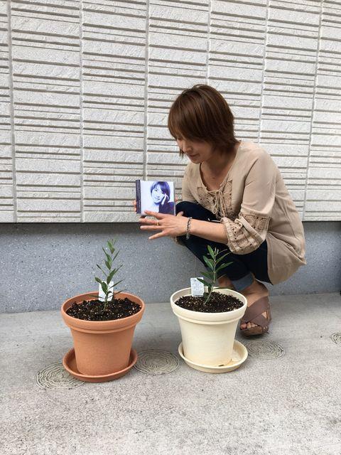渡辺かおる~Kaoru Watanabe~Vo.
