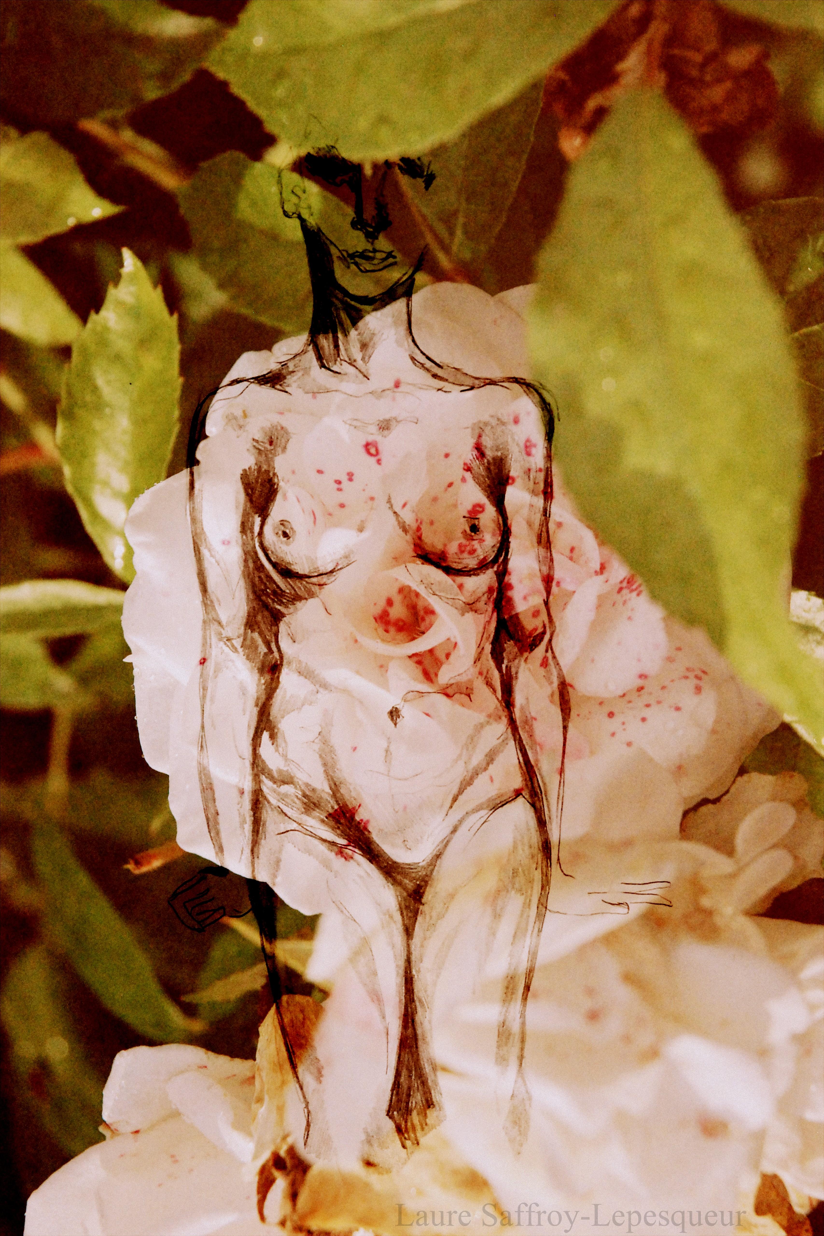 La Naissance d'une Rose_