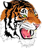 Tygers_edited.png