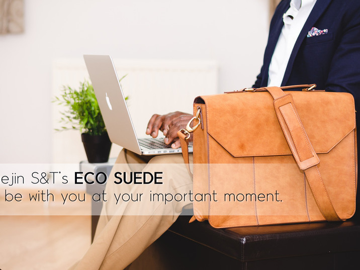 ECO SUEDE / Daejin S&T's CONCEPT IMAGE