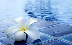 florida pool service