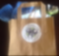 Goody Bag 2018.png