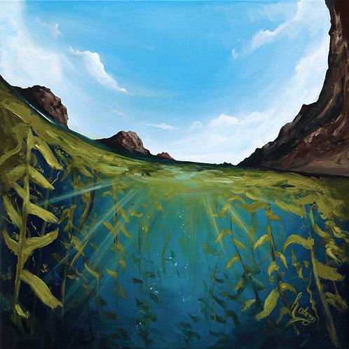 Goldfish Bowl, Anacapa Is. | Original Painting