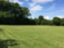 A recently cut secure dog paddock, with blue sky in Summer in Devon