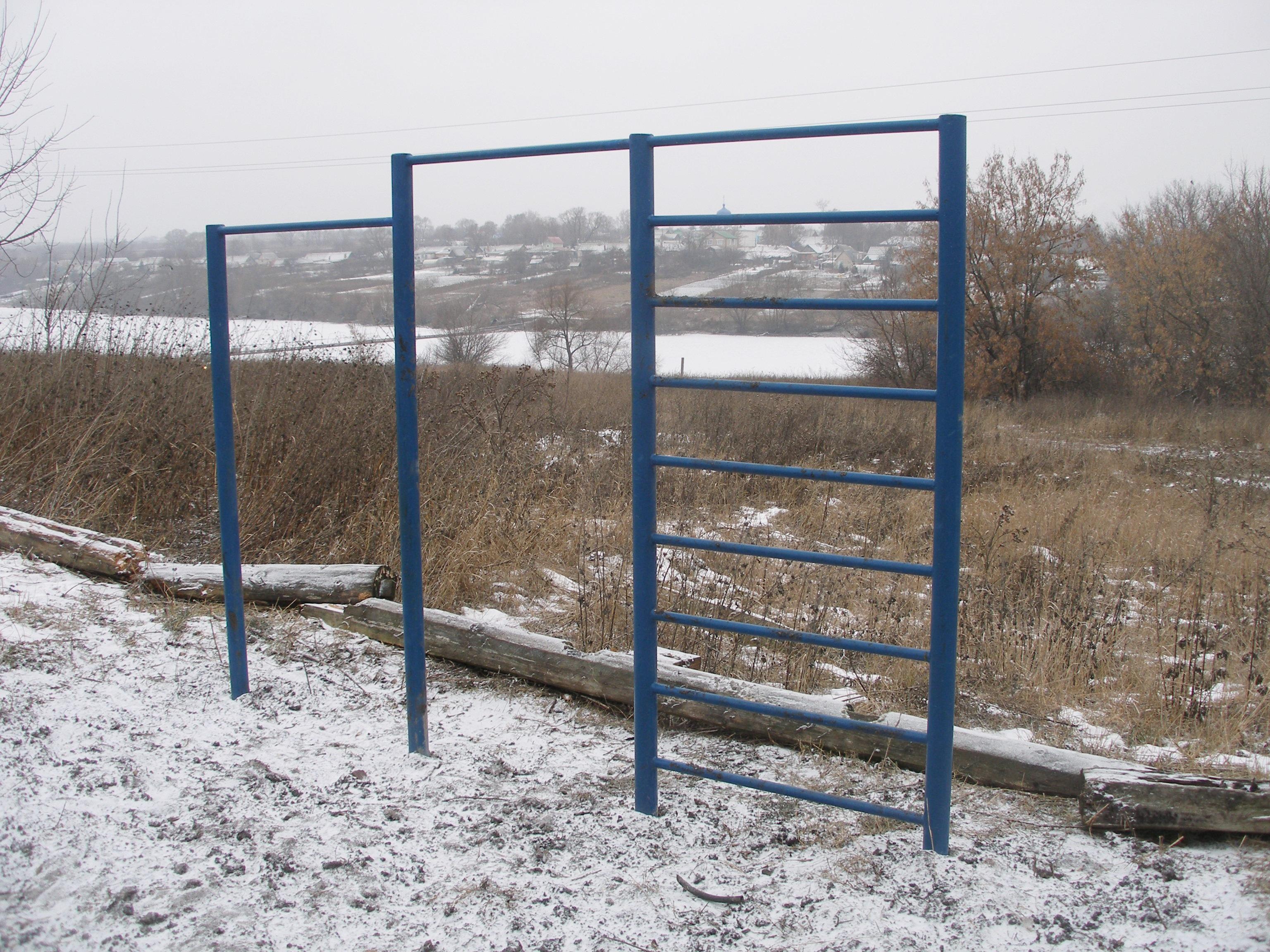 turnik-s-shvedkoy