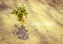 Critical Mass, Manawa