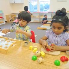 Toddler Montessori Program