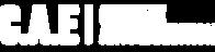 Type Logo White.png