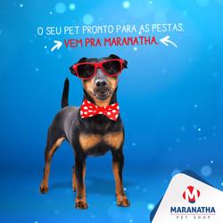 post_maranatha_10