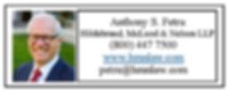 Petru Web Ad 2020.jpg