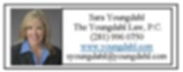 Youngdahl Web Ad 2020.jpg