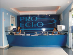 Pro Echo