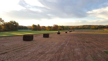 Sod Pallets in Field