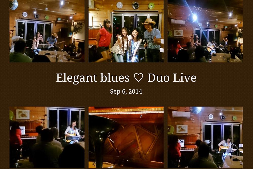 Elegant blues Duo Live