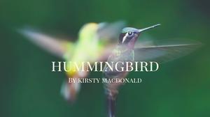 Hummingbird   Poem   Sacred Womanhood