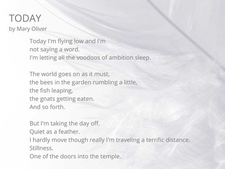 Friday Poem: Today by Mary Oliver