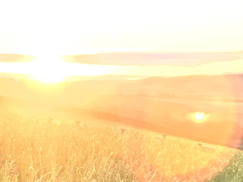 Scotland countryside field - Women and stress
