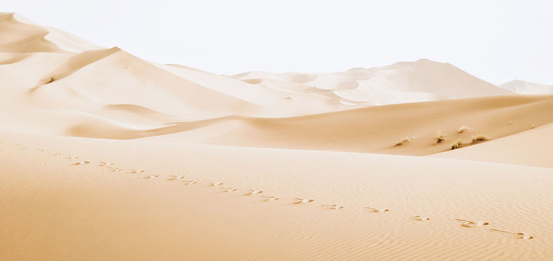 Footsteps in desert sand | www.AlwaysChoose.com | Transformational Coaching and Therapy | Leadership Coaching