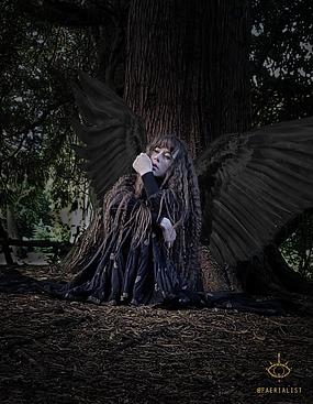 Under Tree Black Wings.png