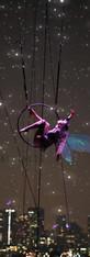Seattle Fairy 2