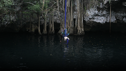Website Version - Cenote with wings - ne