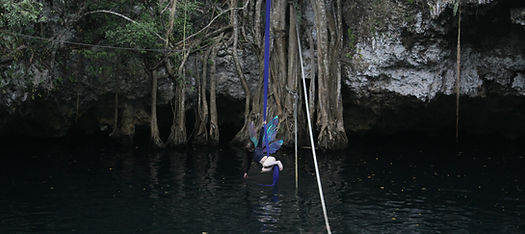 Cenote (9) w wings.png