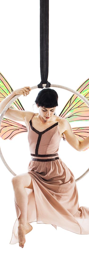 Hoop Fairy 2