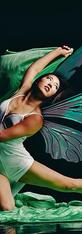 Mizuki Fairy