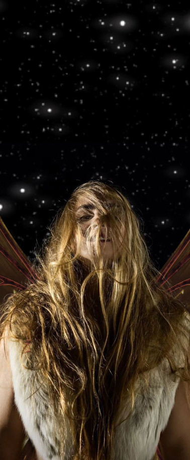 Majestic Fairy
