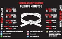 Frank_Dux_-_Dux_Ryu_Ninjutsu_-_Exámenes.
