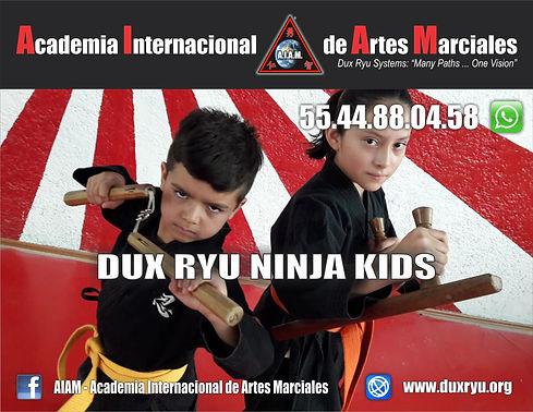 Frank Dux - Dux Ryu Ninja Kids.jpg