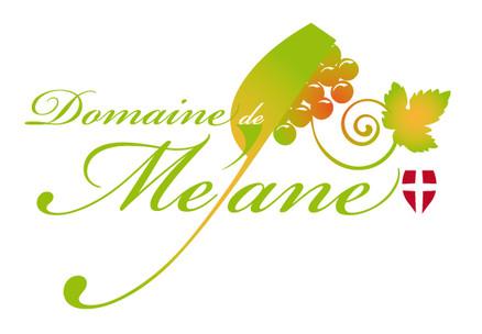 Logo Mejane.jpg