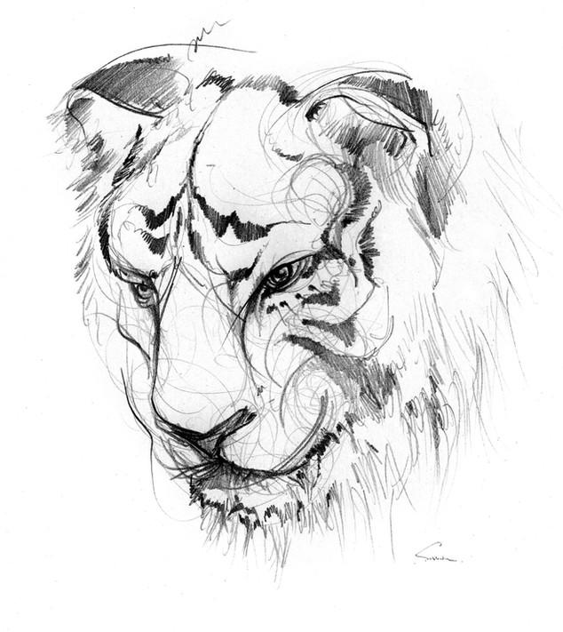 sirblondin_Sebastien Tonin_Le Tigre.jpg