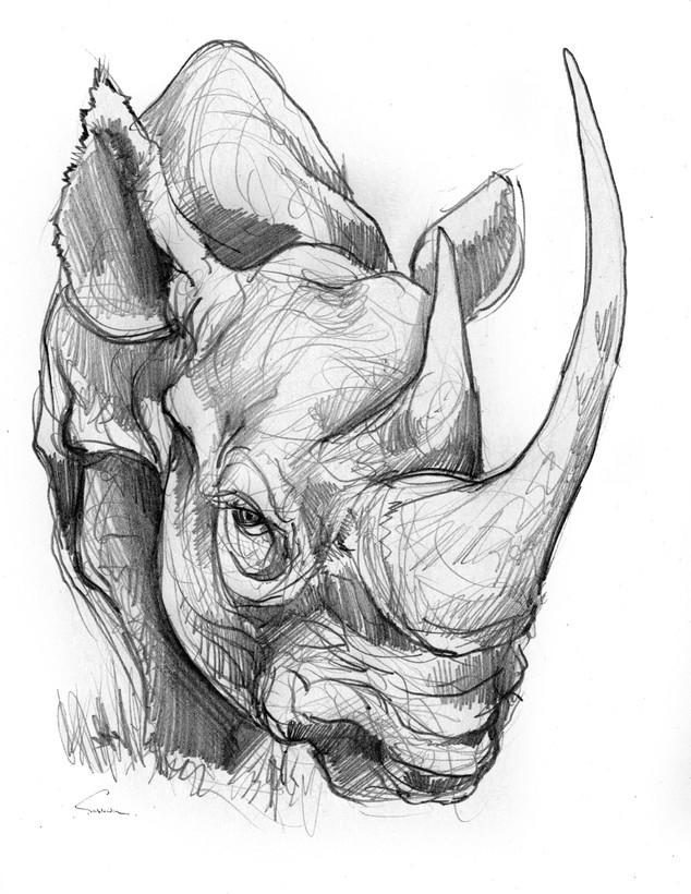 sirblondin_Sebastien Tonin_Rhino.jpg